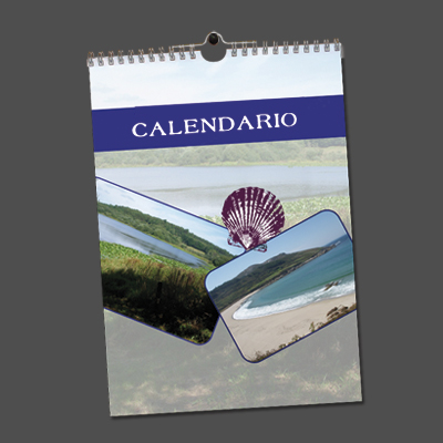 Calendario de pared A4 a una cara (21x29.7 cm.)