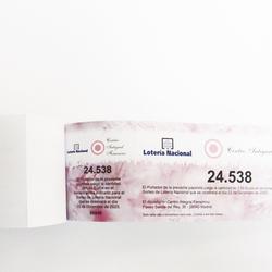 Talonario de rifas, lotería y entradas a una cara a color 21x7 cm.